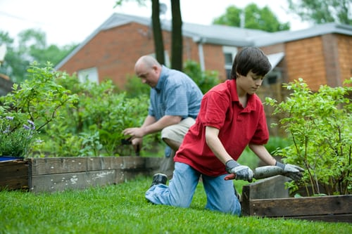 The best way to take good care of your garden easily