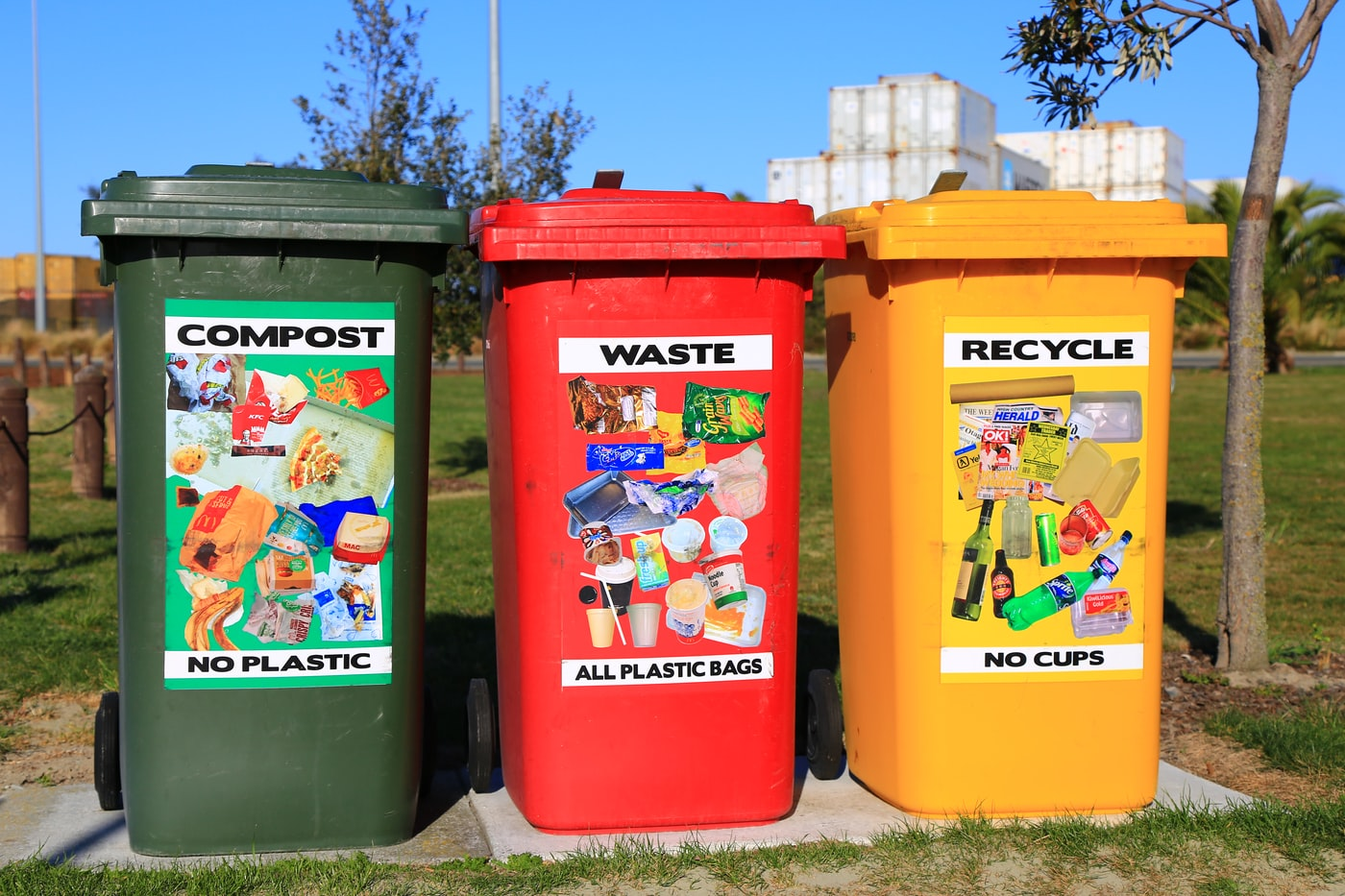 Waste removal Vs. Skip bins; what makes them different?